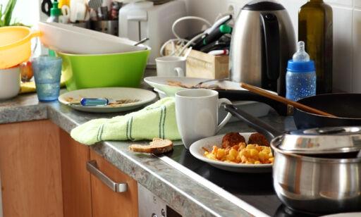 image: Lar du smuler og matrester ligge, kan du få uønsket besøk av dette krypet