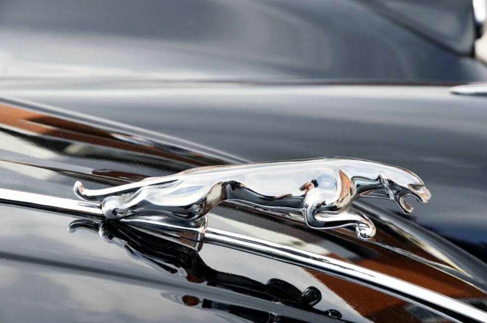 Her hersker ingen tvil om merket, i alle fall... en 1958-modell Jaguar XK150 eid av Geir Aarflot. Foto: Stein Inge Stølen