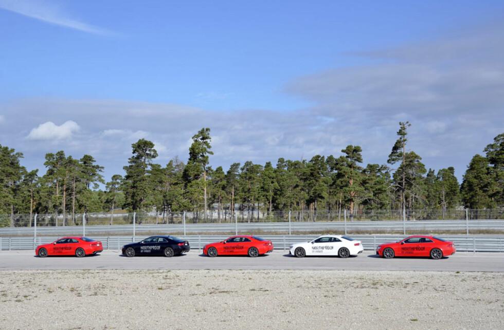 Fem splitter nye Audi RS5'er sto til disposisjon for kjøring på småveiene rundt omkring på Gotland. På banen fikk testsjåførene boltre seg i Audi RS4. Foto: Stein Inge Stølen