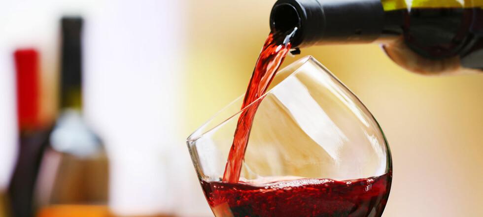 Glad i vin? Dette må du vite!