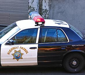 Disse politiveteranene trenger du ikke frykte