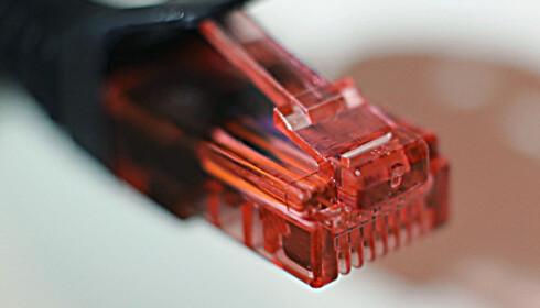 <strong>NETTVERK:</strong> De nye strømmålerne kan kommunisere videre via en standard nettverkskabel.