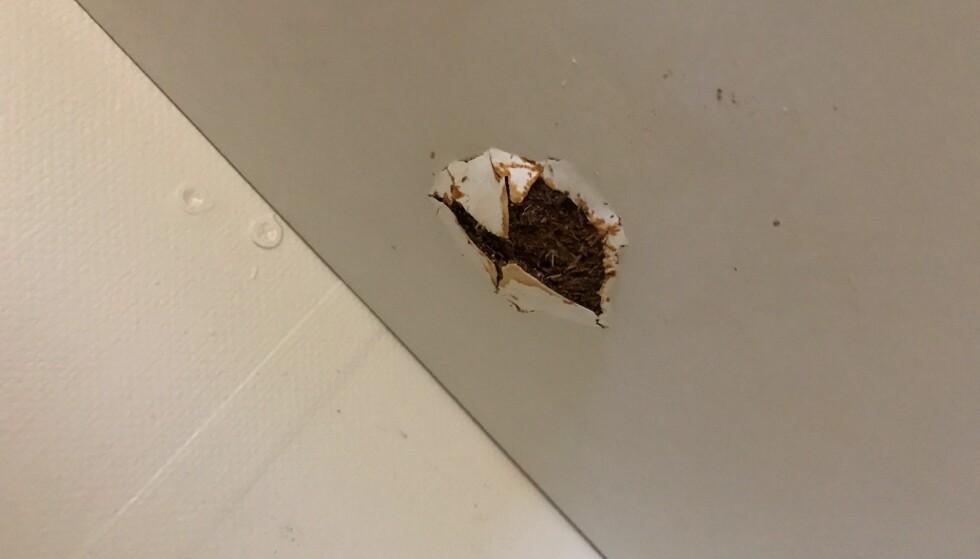 SKADE: Slik ser hullet ut fra undersiden av hylleplaten. Foto: Privat