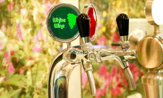 PÅ TAPP: Du kan forsyne deg med både øl og vin fra tappekraner. Foto: Hanna Sikkeland.