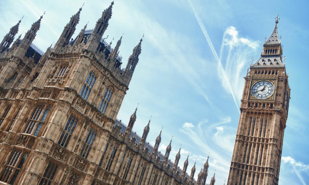 HET POTET: Det har gått politikk i tørketrommel-saken. Nå kan den havne i selveste Parlamentet. Foto: ZoneCreative/Shutterstock/NTB scanpix