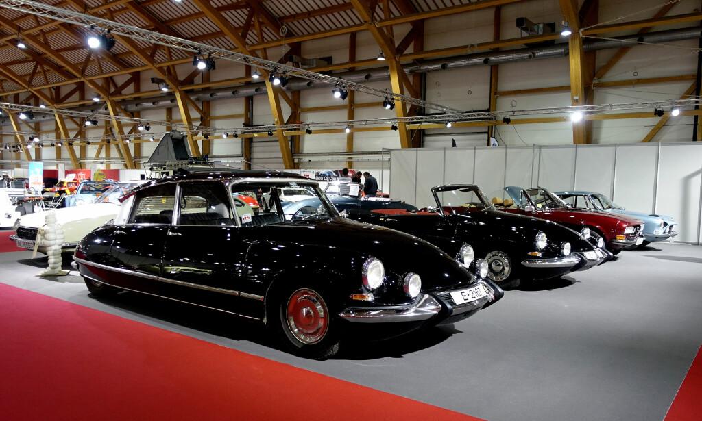 FRANSK HJØRNE: Citroën DS var en sensasjon både designmessig og teknologisk da den kom i 1955 og er blant de virkelig store referansene i bilhistorien. Her ser vi en lukket og en åpen versjon side om side. Til venstre for dem, en 70-talls GS og til høyre, en Pininfarina-designet Peugeot 504 Coupé. Foto: Knut Moberg