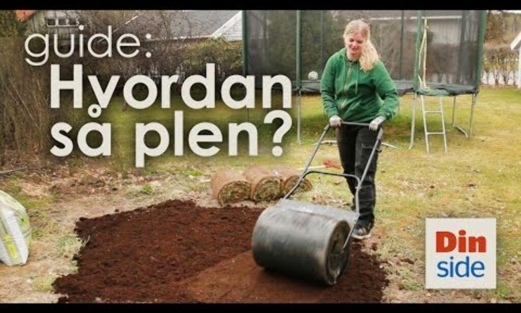 image: Hvordan så plen? Få gresset til å gro med disse tipsene!