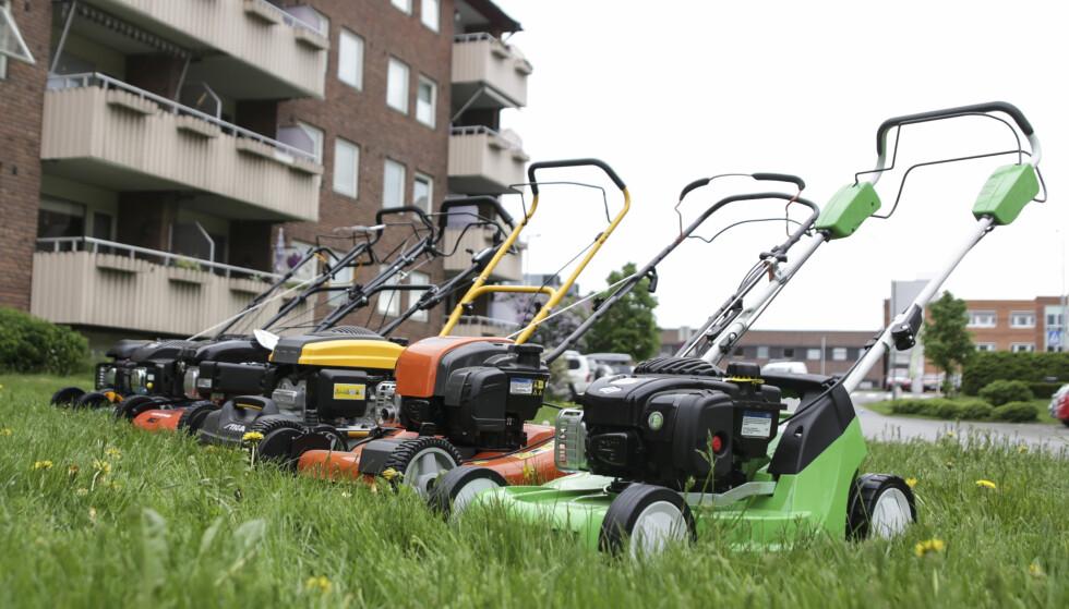 MOTORGRESSKLIPPERE: Vi har testet gressklippere med motor fra 4.000 kroner og nedover. Her får du mye for pengene. Foto: Øivind Lie-Jacobsen