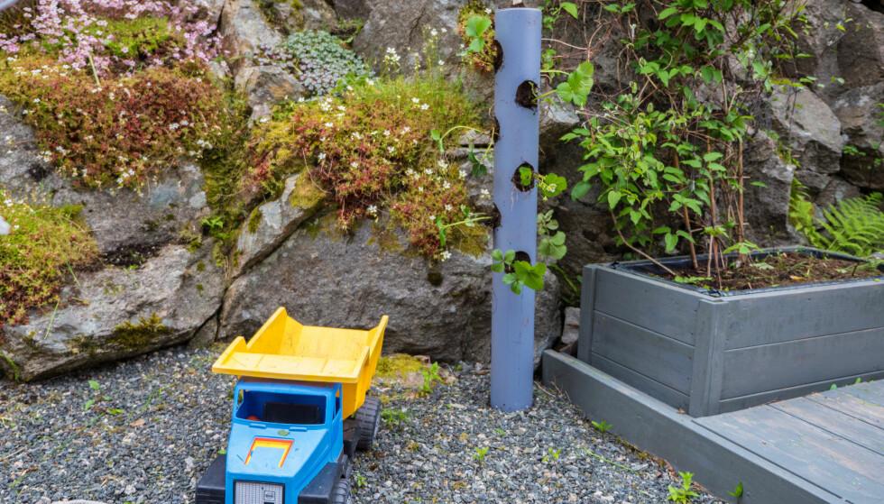 PLASSERING: Har du en propp i bunnen kan man enkelt flytte rundt på jordbærrøret. FOTO: Simen Søvik