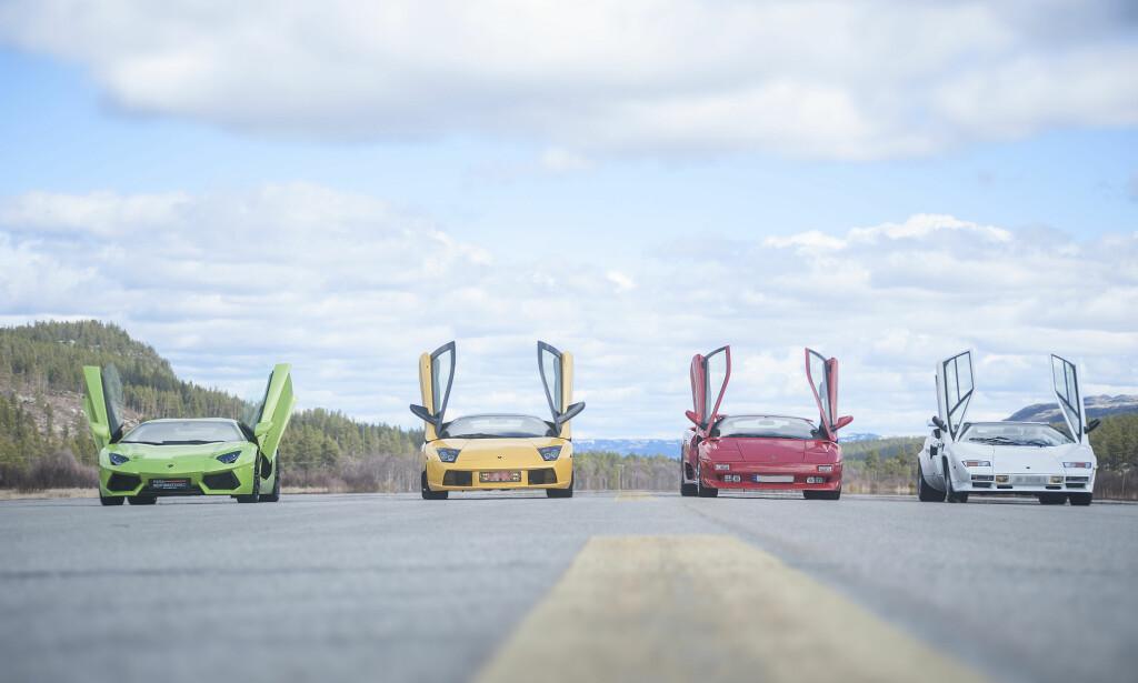 LAMBO-KAMP: Aventador (t.v.), Murcielago, Diablo og legenden Countach klare for å fly. Foto: Kaj Alver