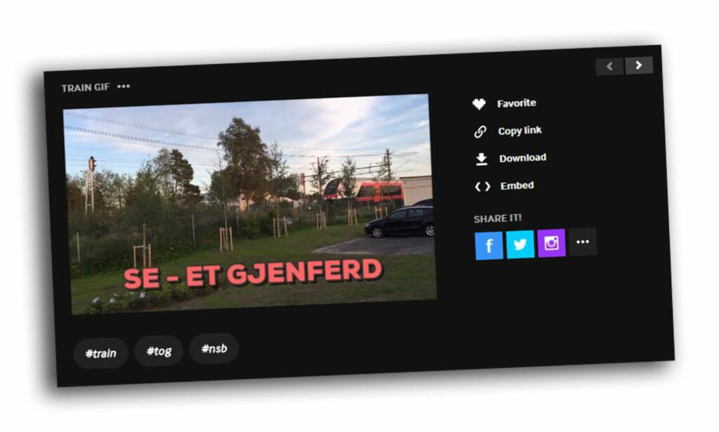 LAG GIF-ANIMASJONER: Denne tjenesten gjør det superenkelt å lage dine egne GIF-er. Skjermdump: Dinside