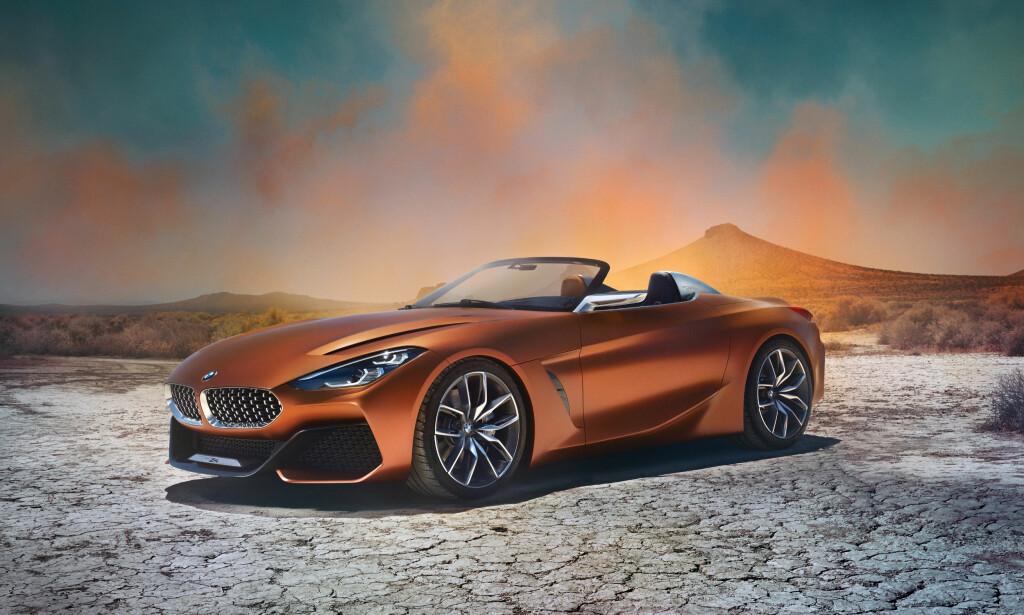 GRRRR! Den ser rimelig hissig ut, konseptbilen BMW stiller ut i California denne helgen og som hinter om neste generasjon Z4. Inntil videre heter den Concept Z4. Foto: BMW