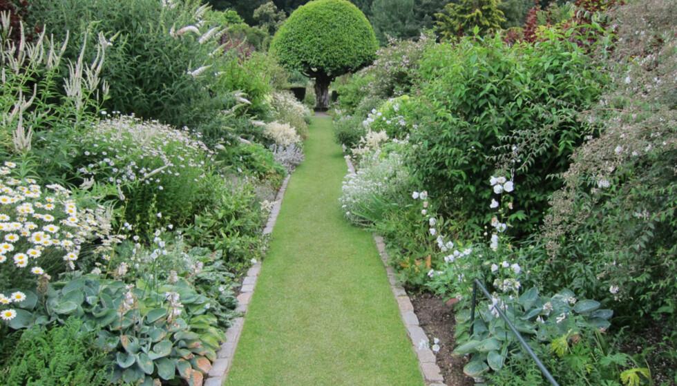 STIL: Ønsker du en hage hvor du dyrker din egne økologiske grønnsaker, den engelske hagen med overdådig blomstring, den avslappende hagen med yrende dyreliv, eller den enkle hagen med stramme linjer? Foto: Simone Winkler.