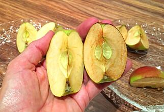 Hvorfor blir noen epler lettere brune enn andre?