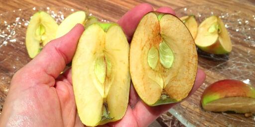 image: Hvorfor blir noen epler lettere brune enn andre?