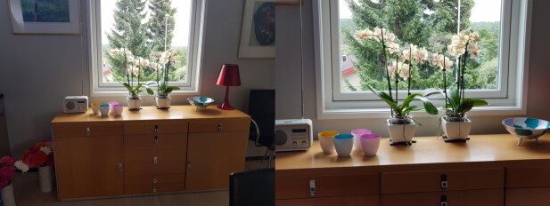 2X ZOOM: Her ser du forskjellen i utsnitt på om du bruker det vanlige objektivet (til venstre) og tele-objektivet (til høyre). Foto: Pål Joakim Pollen