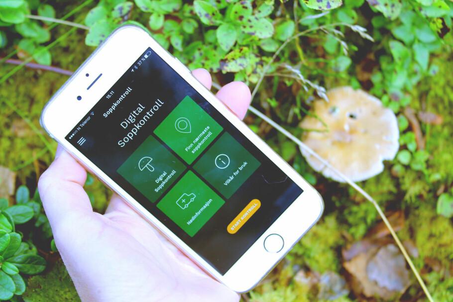 MED SOPPKONTROLLEN I LOMMA: Med denne appen fra Norges sopp- og nyttevekstforbund, kan du enkelt sjekke hvilken sopp du har funnet - og om den er spiselig eller ikke. Du får svar i løpet av noen få minutter. Foto: Kristin Sørdal