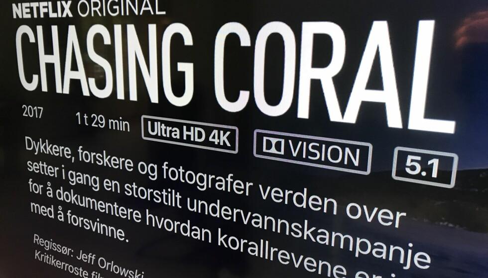 <strong>ENDELIG:</strong> Nå kan du endelig få full tilgang til det beste videomaterialet hos blant annet Netflix. Foto: Bjørn Eirik Loftås