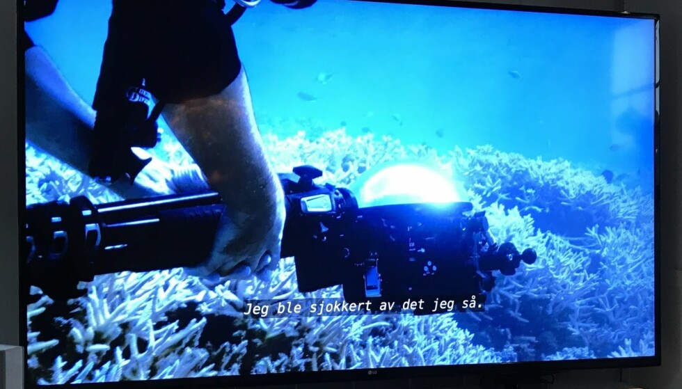 <strong>FANTASTISKE BILDER OG KONTRAST:</strong> Takket være 4K og HDR, blir opplevelsen veldig virkelighetsnær. Det kommer til sin rett i naturfilmer, blant annet. Dessverre er det vanskelig å få noe ordentlig inntrykk av et bilde av skjermen - det må oppleves. Foto: BJørn Eirik Loftås