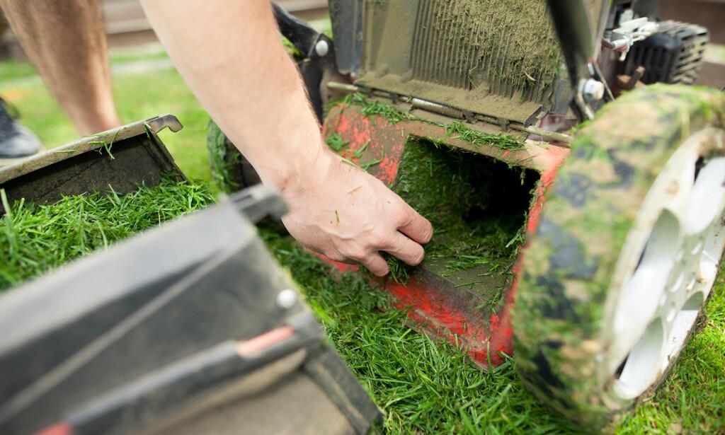 FUKTIG GRESS: Pass på at du børster eller spyler vekk alt av fuktige gressrester fra gressklipperen før vinteren. Foto: Shutterstock