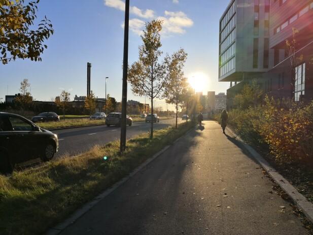 Når sola står direkte på som her, får mobilkameraene en god utfordring. Vi klarer ikke å se like godt selv i slikt lys en gang. Foto: Pål Joakim Pollen