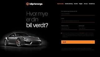 DYRT: Det er nærmest umulig å se hva prisen for denne tjenesten er. Skjermdump: bilprisnorge.com