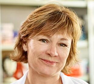 Hanne Serine Finstad, dr. philos og fabrikksjef i Forskerfabrikken. Foto: Forskerfabrikken.