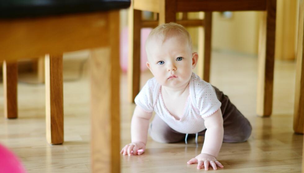 SMÅBARN SOM KRABBER RUNDT PÅ GULVET ER MER UTSATT: – Det er klart at for barn, spesielt småbarn som krabber rundt på gulvet, vil støvet vil være en større kilde for disse miljøgifter, enn for voksne, sier Knutsen i FHI. Foto: Shutterstock/NTB Scanpix