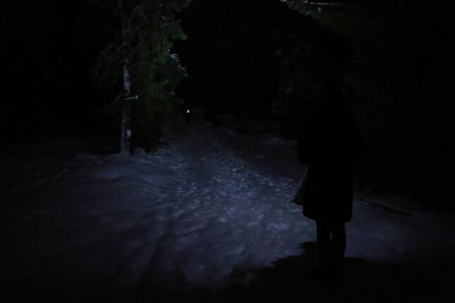 SLIK LYSER NINOX2: Du kan skimte vår hjelper med refleksvest langt der fremme, men dette er ikke bra lys. Foto: Ole Petter Baugerød Stokke