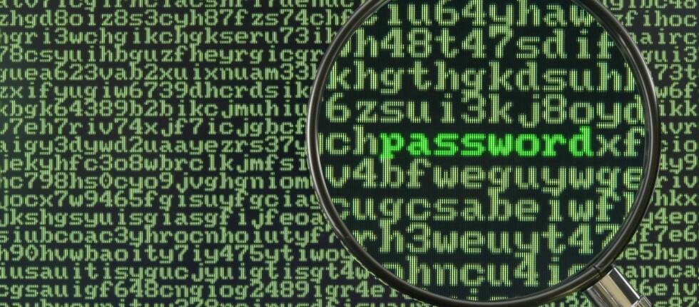 ER PASSORDET TRYGT? Svært mange nettsteder har hatt et sikkerhetshull i to år som gjør det mulig for uvedkommende å fange opp passordet ditt. Foto: ALL OVER PRESS