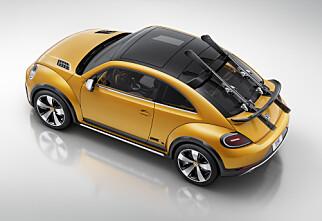 Hinter om VW Beetle Cross