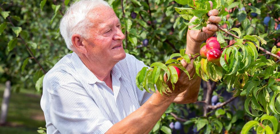 image: Slik får du mye bedre økonomi som pensjonist