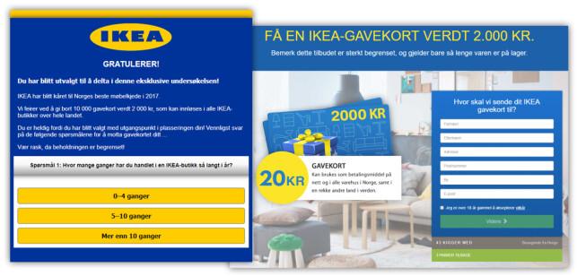 KLASSISK: Noen har stjålet Ikeas logoer og laget en falsk spørreundersøkelse som sender deg videre til en side hvor du må fylle inn diverse informasjon. Da blir du abonnent på noe som koster 370 kroner i måneden – om vilkårene faktisk snakker sant. Foto: Ole Petter Baugerød Stokke