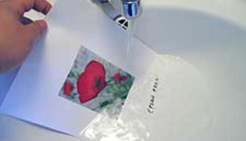 Utskriften på Premium Glossy Photo Paper tålte flere minutter under rennende vann