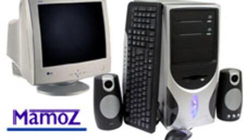 Mamoz Data 2004-02
