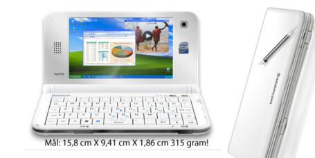 Er Spiga verdens minste PC?