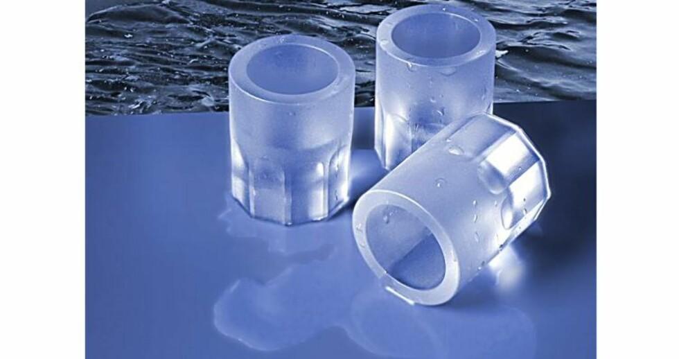 Antarktiske shotglass