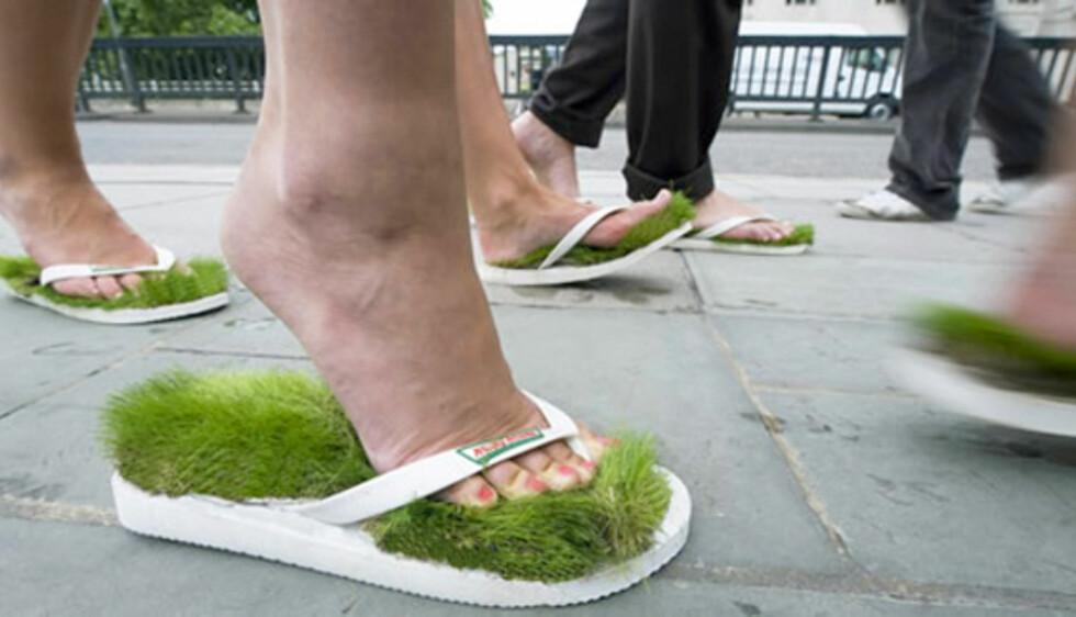 Grønt gress er gode greier