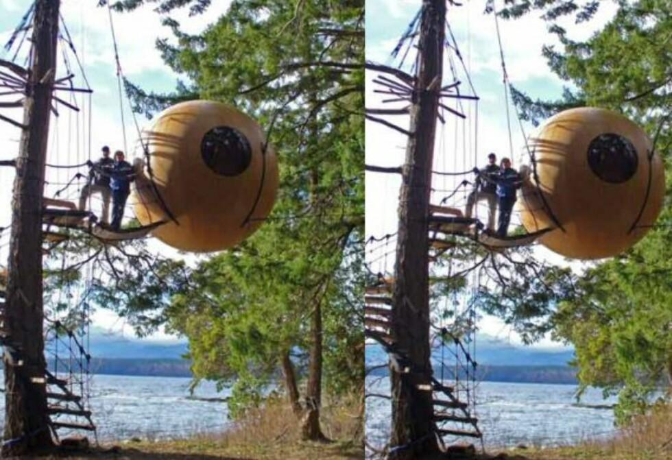 The Free Spirit Spheres