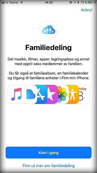 DEL KJØPENE: Er dere flere i familien med iPhone og iPad, kan familiedeling være lurt å bruke, så dere ikke kjøper de samme appene flere ganger. Skjermbilde: Kirsti Østvang