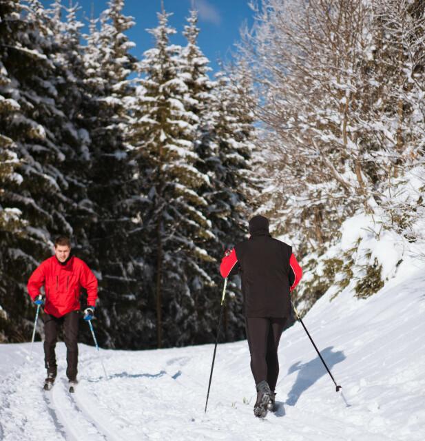 <strong>HØYREKJØRING:</strong> Som for bil, gjelder høyrekjøring også i skisporet. Foto: Shutterstock/ NTB Scanpix