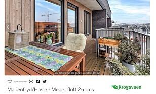 TOPPLEILIGHET: En toroms utenfor Oslo sentrum på 54 kvadratmeter koster fire millioner kroner. Foto: skjermdump.