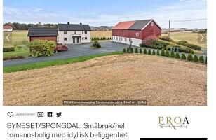 BONDE I MAGEN?: For under seks millioner kroner kan du få en hel gård i Trondheim. Foto: skjermdump.