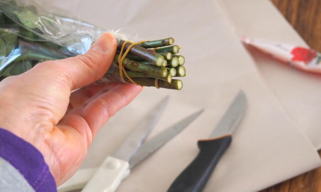 MÅ SNITTES FØR BRUK: Slik ser de ut når du kommer fra butikken. De må snittes før du setter dem i vann - og med kniv, IKKE med saks! Foto: Kristin Sørdal