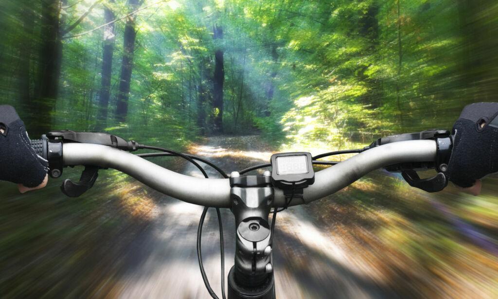 image: Fartsgale elsyklister trimmer syklene sine selv