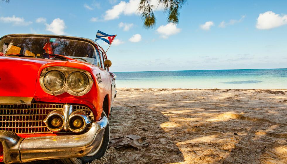 CUBA: Cuba kan altså tilby både verdens beste strender - og amerikanske veteranbiler. Husk at det er orkansesong fra juni til oktober. Men kaldt blir det uansett ikke her: Gjennomsnittstemperaturen i lufta er ikke lavere enn 26 grader (i januar) - og vanntemperaturen kryper heller ikke under 26 grader (desember-april). Foto: Shutterstock/NTB scanpix