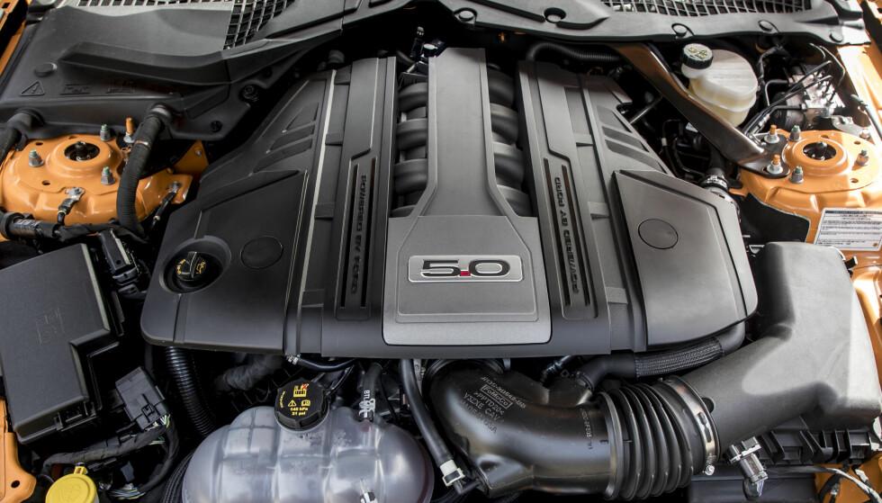 MUSKLER: Åtte sylindre,fem liter, 450 hester, godt med turtall og gromlyd: Det er duket for inspirerende kjøreopplevelse. Foto: Ford