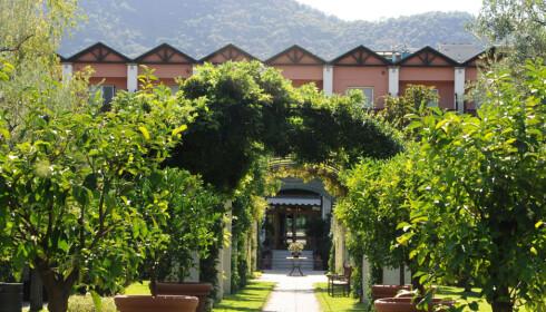 MESTERNES MESTER: Bo som en deltaker på luksushotellet Iseo Lago i Italia. Foto: Iseo Lago hotel