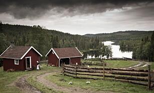 FARMEN 2015: Løntjernbråten i Eidsvoll. Foto: Lars Eivind Bones / Dagbladet