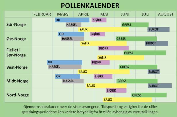 POLLENKALENDER: Pollen fra or, hassel og salix er allerede i luften, snart blomstrer også bjørk. Foto: NAAF
